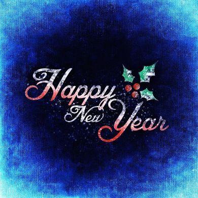Https cdn pixabay com photo 2015 12 11 22 05 new years day 1088851 960 720